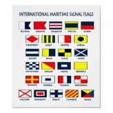 Bayraklar & İşaret Flamaları
